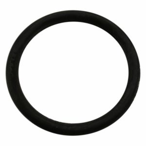 SALT SOFTNER LID O RING